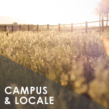 Ellerslie Campus and Locale